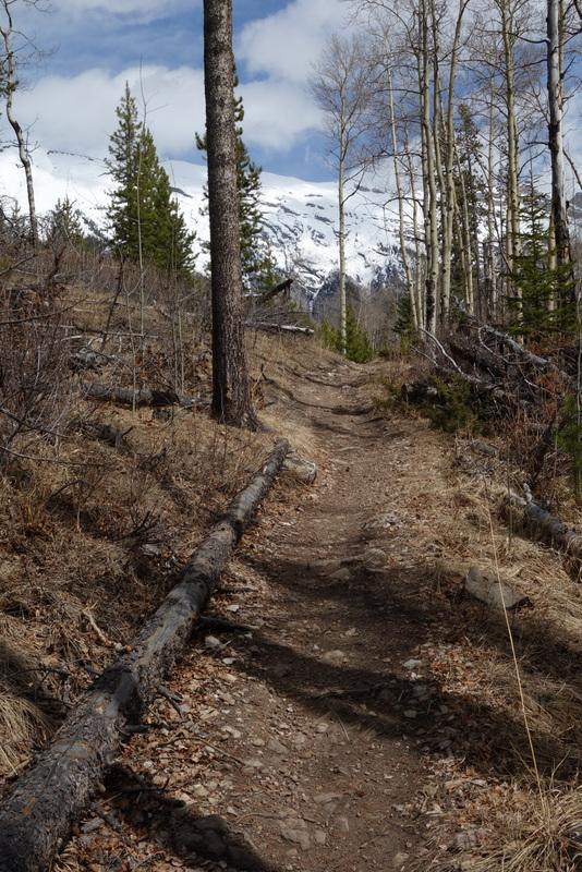 Nice dry trail