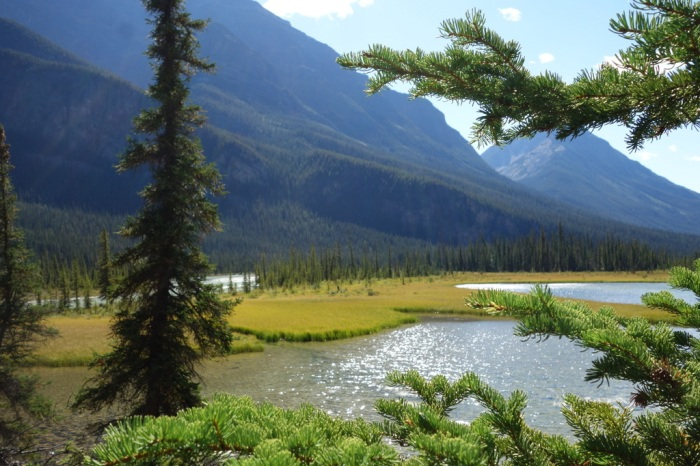 The Athabasca Pass portage route