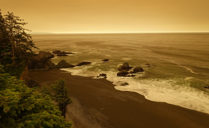 Drought and Forest Fires on the West Coast Trail