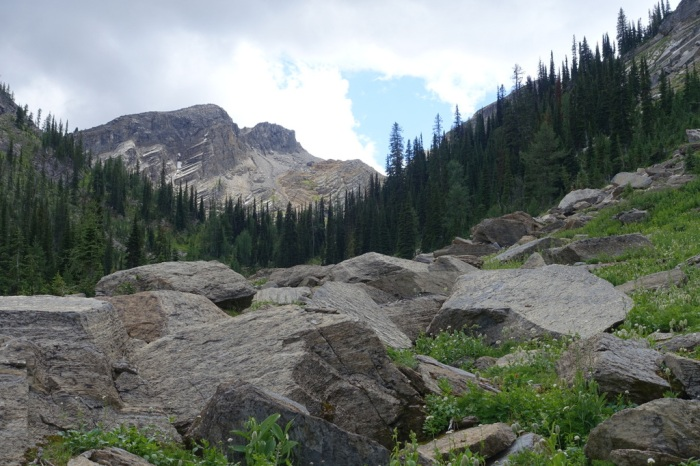 Boulders & meadows