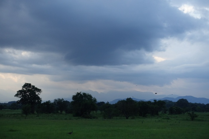 Thunderheads blow in