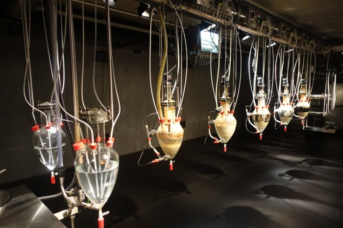 "The slightly creepy ""digestion machine"" at MONA"