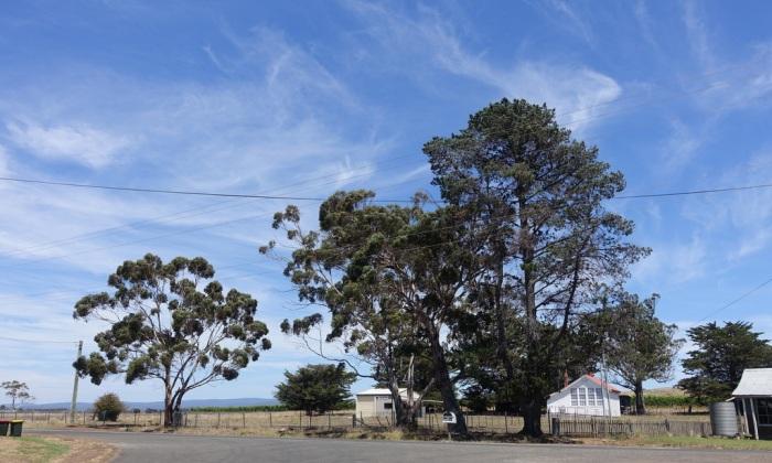 Rural east coast Tasmania