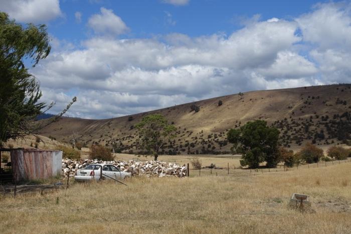 Farmland along the Derwent Valley