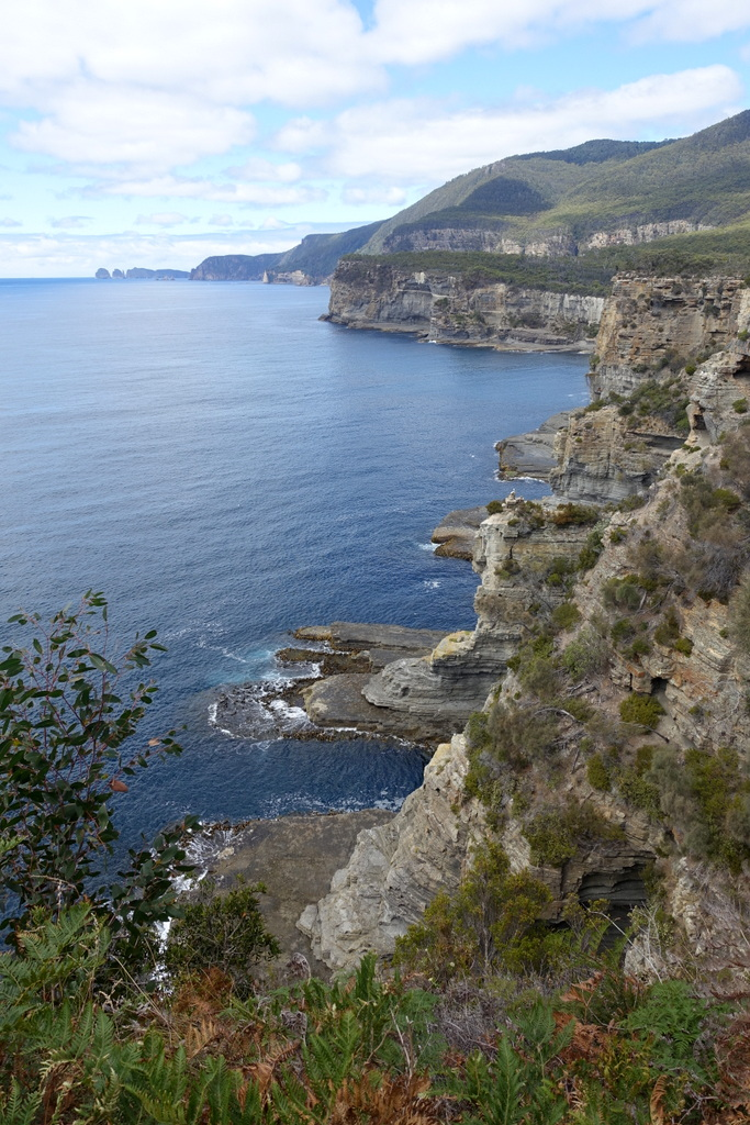 Sea cliffs of the Tasman peninsula