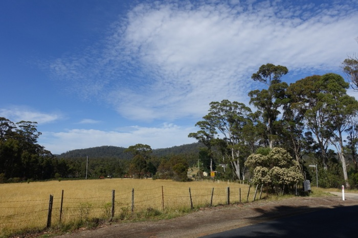 Farmland in the Tasmanian hills