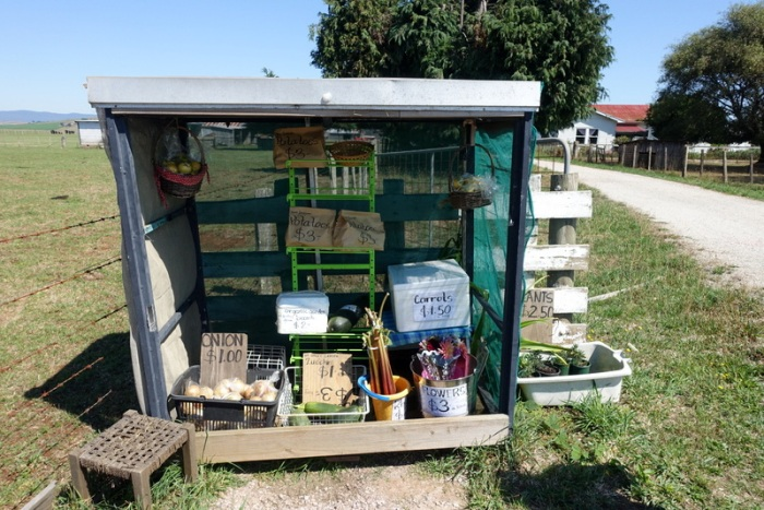 Farm-fresh veggies for sale