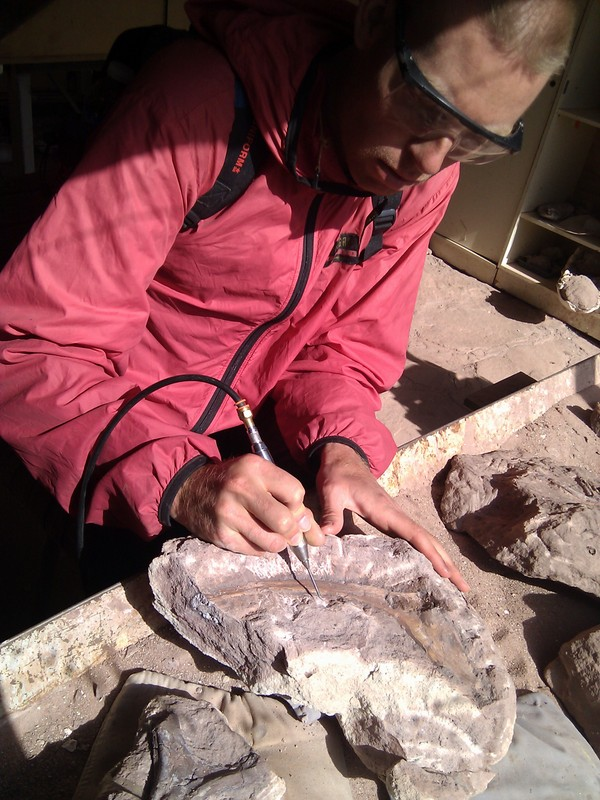 Argentina, 2011 - Extracting bone from hard rock as a volunteer at a dinosaur dig site
