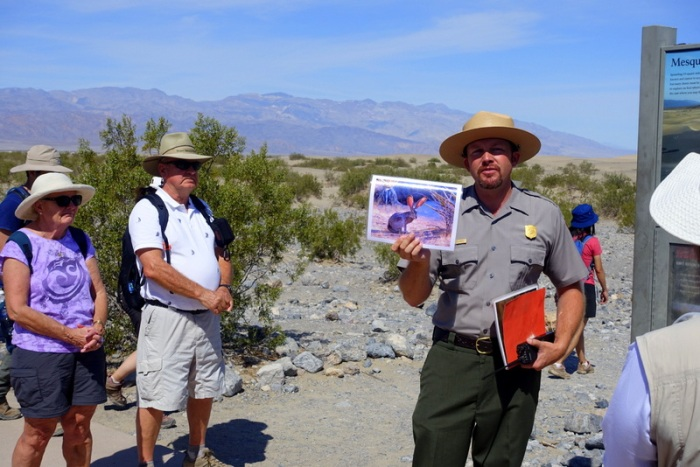 Learning about desert wildlife in a Park Ranger presentation