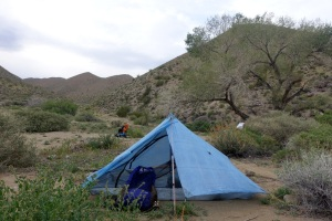 Camped in Dead Horse Canyon