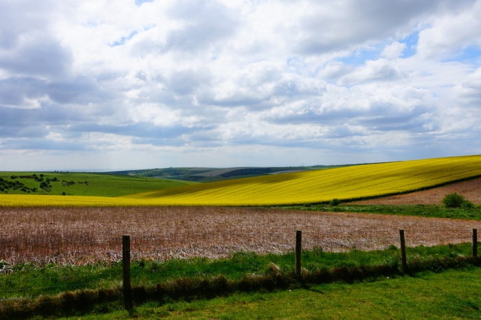 May - I discover the soft rolling landscapes of England's South Downs Way
