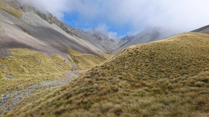The highest point on the TeAraroa