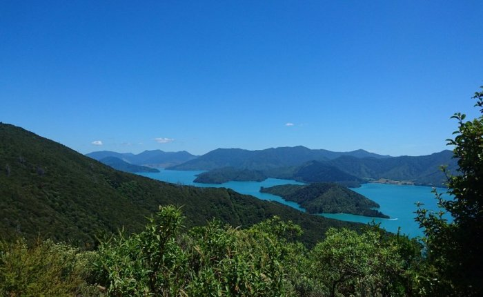 Walking New Zealand's Queen Charlotte Track